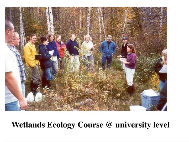 Wetlands Ecology Course @ university level