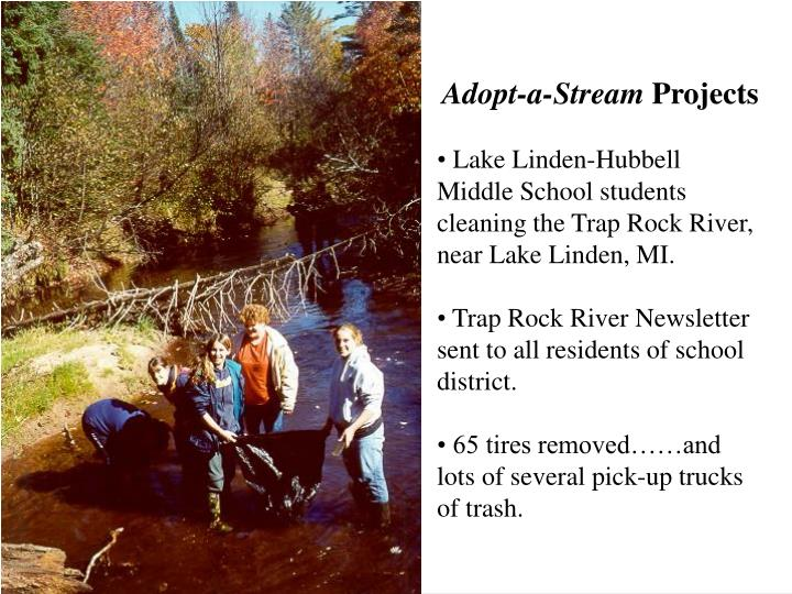 Adopt-a-Stream