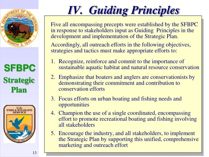 IV.  Guiding Principles