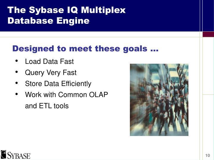 The Sybase IQ Multiplex Database Engine