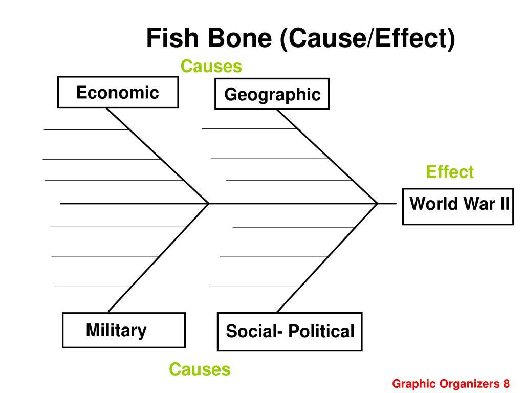 Fish Bone (Cause/Effect)