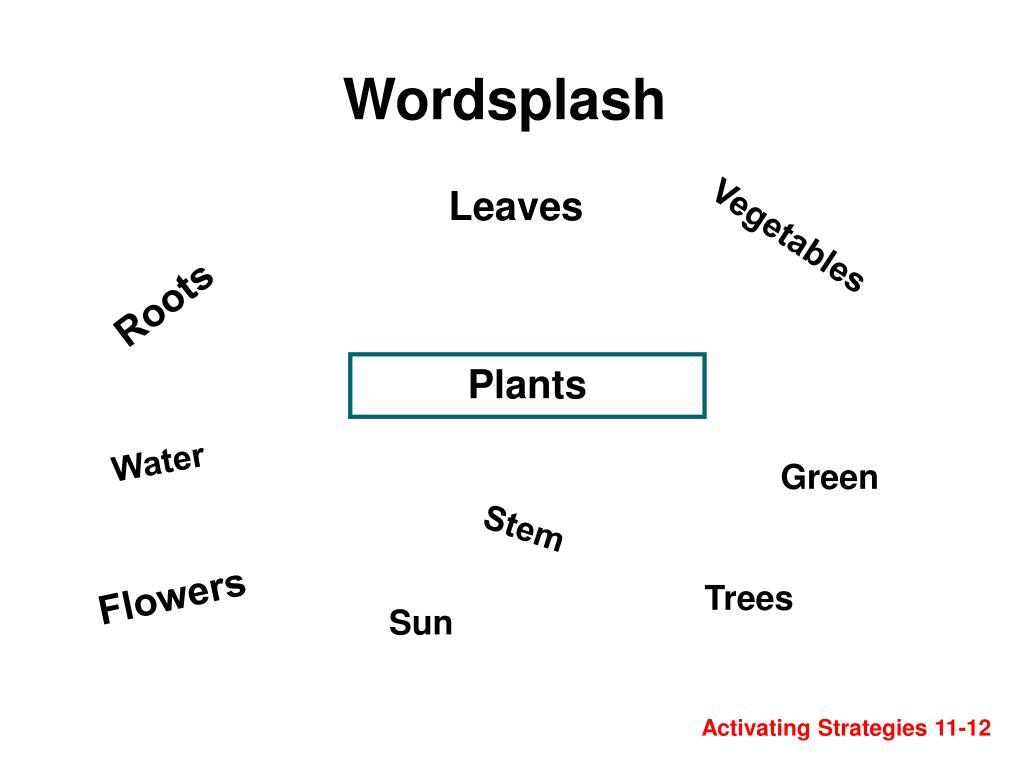 Wordsplash