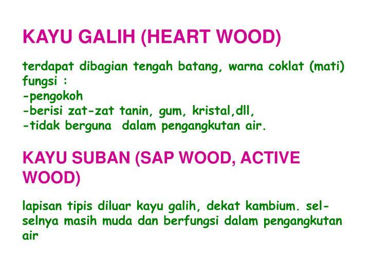 KAYU GALIH (HEART WOOD)