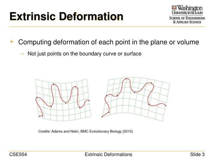 Extrinsic Deformation