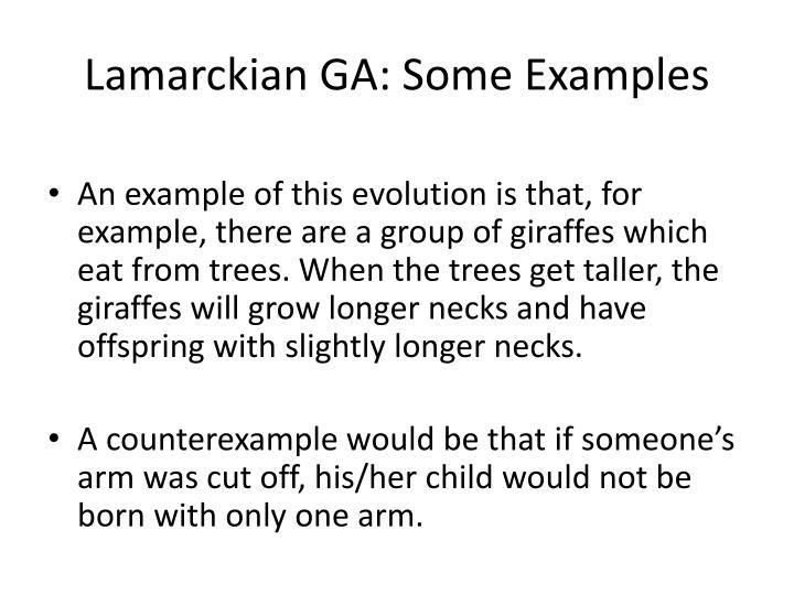 Lamarckian GA: Some Examples