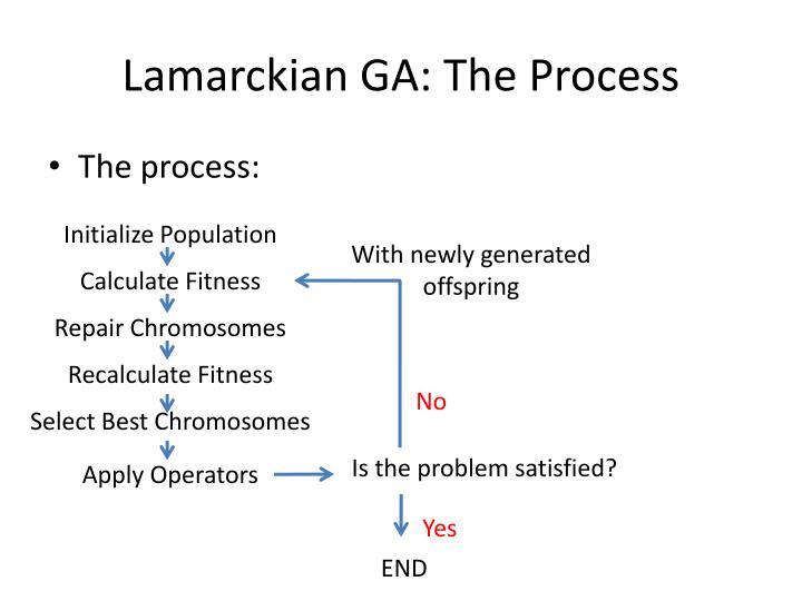 Lamarckian GA: The Process