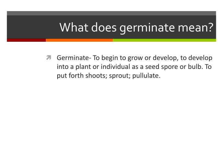 What does germinate mean?