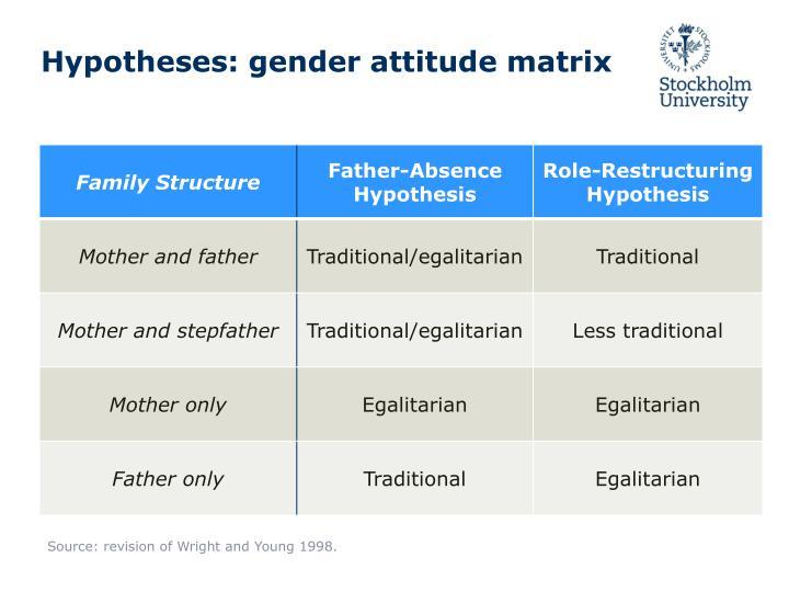 Hypotheses: gender attitude matrix
