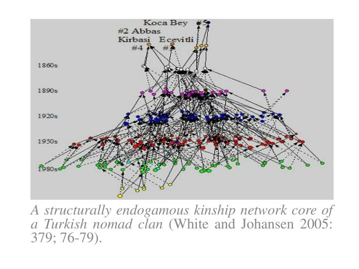 A structurally endogamous kinship network core of a Turkish nomad clan
