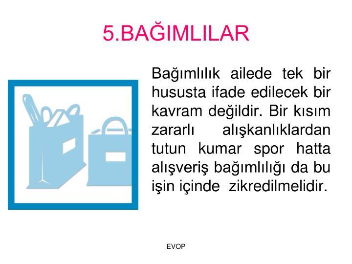 5.BAIMLILAR