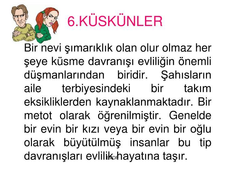 6.KSKNLER