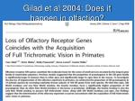 gilad et al 2004 does it happen in olfaction
