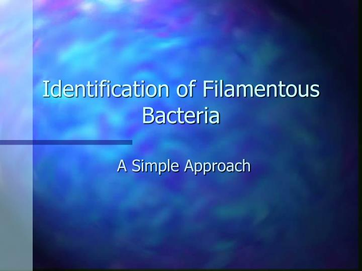 identification of bacteria Classification of bacteria is extensive and complex but can be done based some of the aspects of bacterial classification also help in identification bacteria.