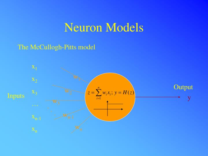Neuron Models
