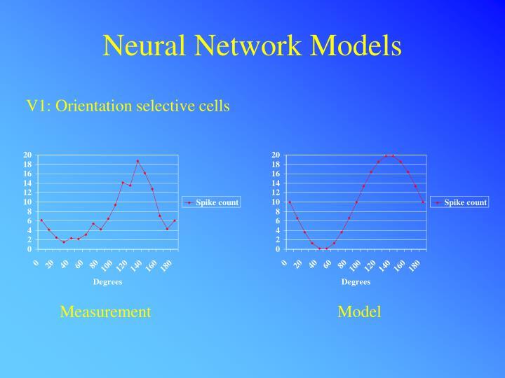 Neural Network Models