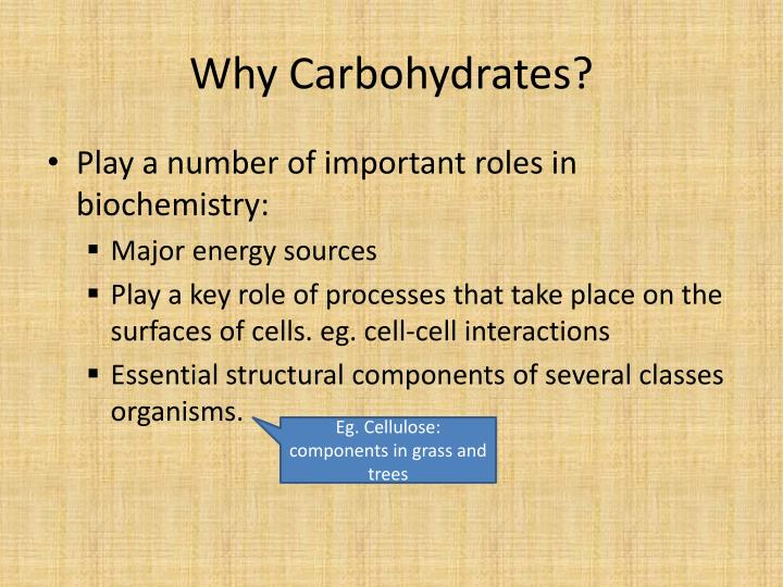 Why carbohydrates