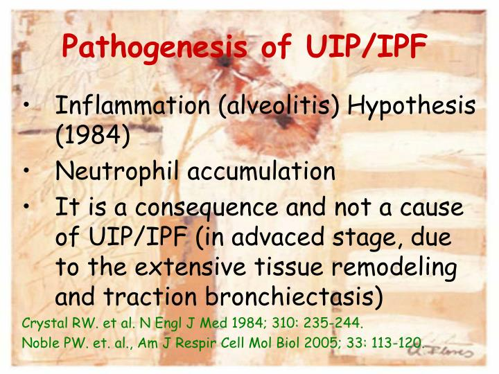 Pathogenesis of UIP/IPF