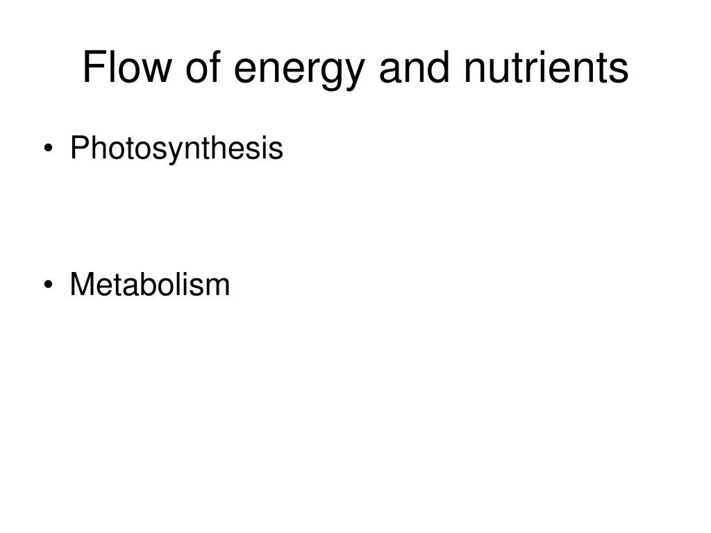 Flow of energy and nutrients