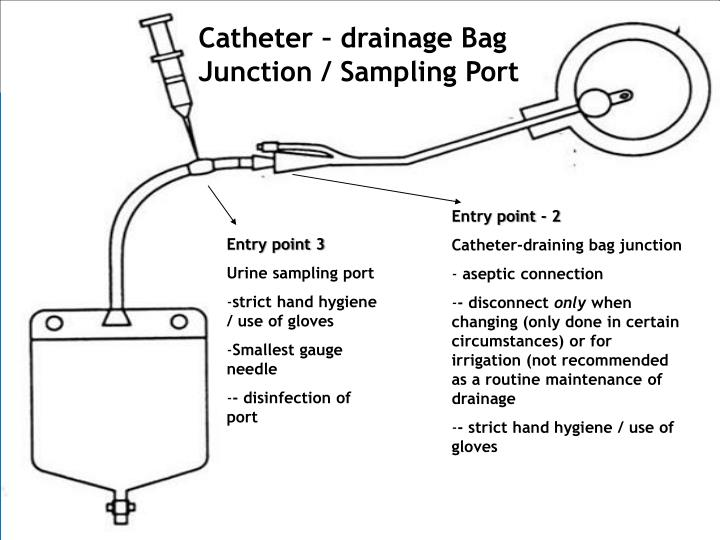 Catheter – drainage Bag Junction / Sampling Port