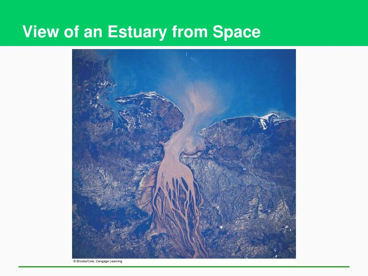 View of an Estuary from Space