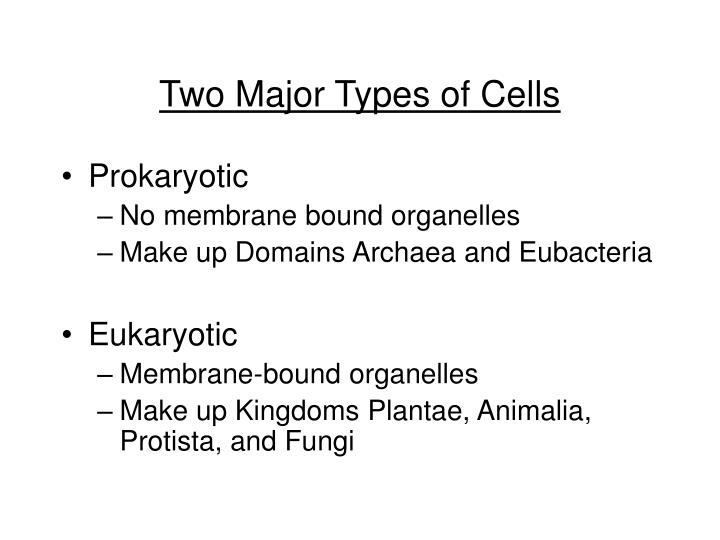 Two Major Types of Cells
