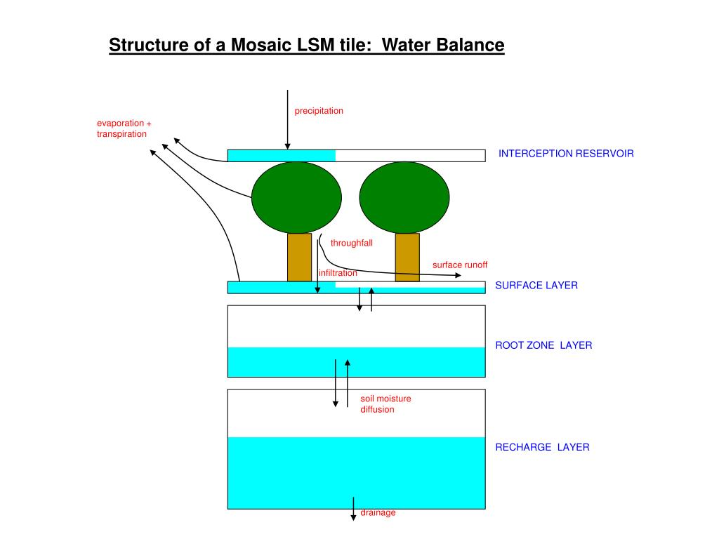 Structure of a Mosaic LSM tile:  Water Balance