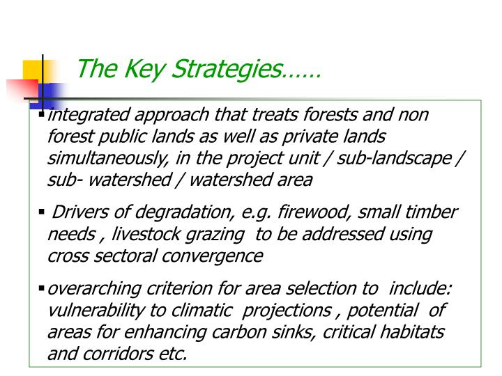 The Key Strategies……
