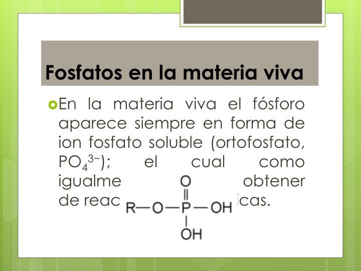 Fosfatos en la materia viva