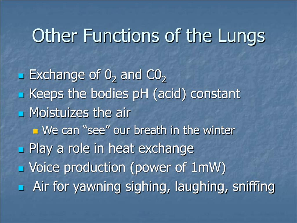 Other Functions of the Lungs