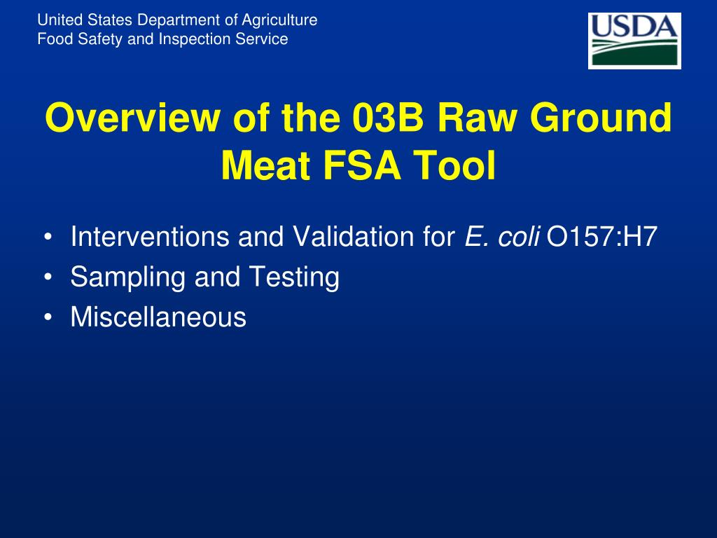 Overview of the 03B Raw Ground Meat FSA Tool