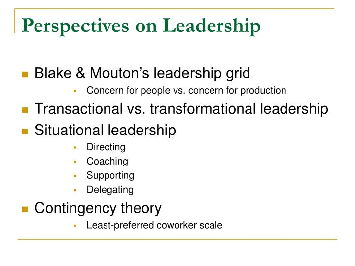 Perspectives on Leadership