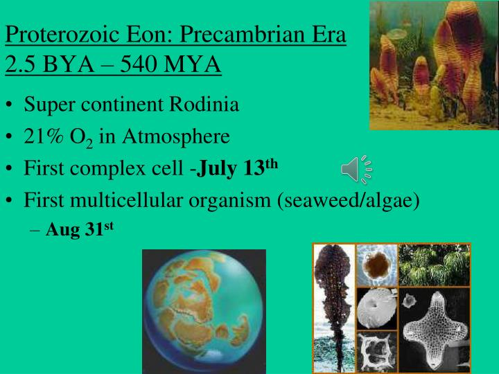 an overview of the pre achaean achaean and proterozoic eras Overview concept 251: conditions on early earth made the origin of life possible the necessary conditions for organisms to carry out reproductions is due to vesicles.