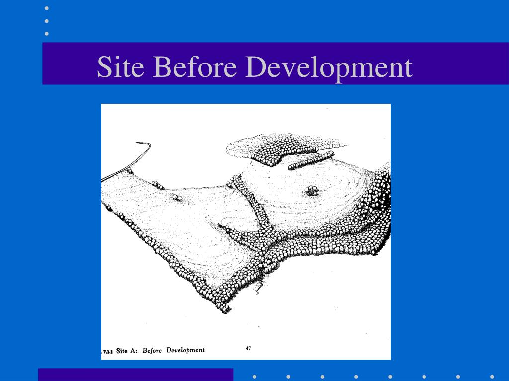 Site Before Development