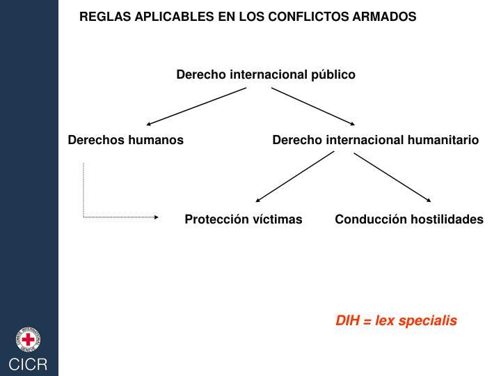 REGLAS APLICABLES EN LOS CONFLICTOS ARMADOS