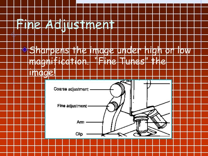 Fine Adjustment