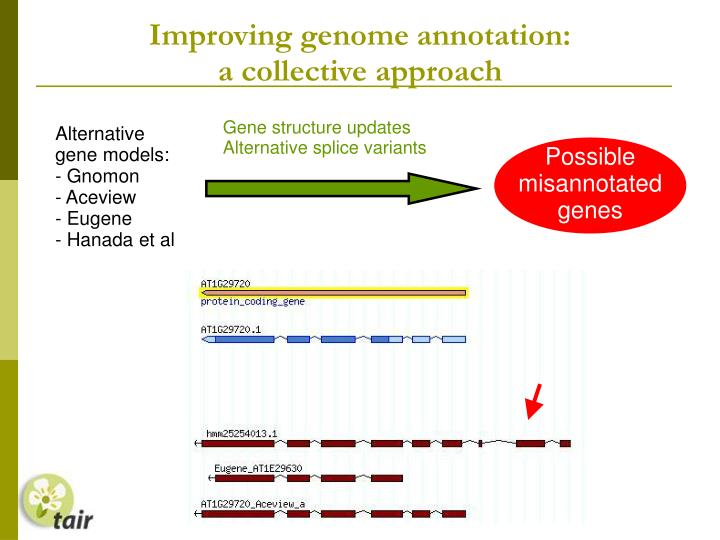 Improving genome annotation: