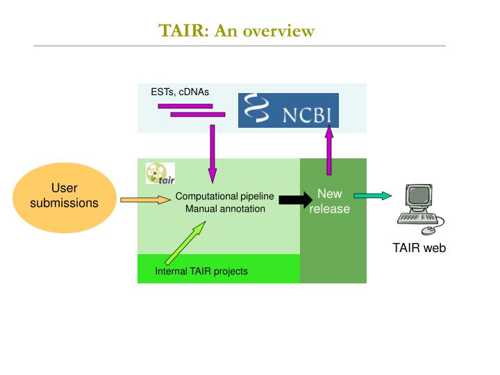 TAIR: An overview