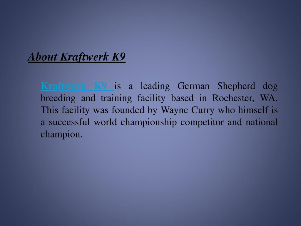 About Kraftwerk K9