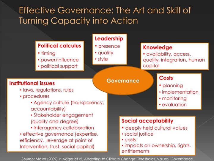 Effective Governance: The Art and Skill of Turning Capacity into Action