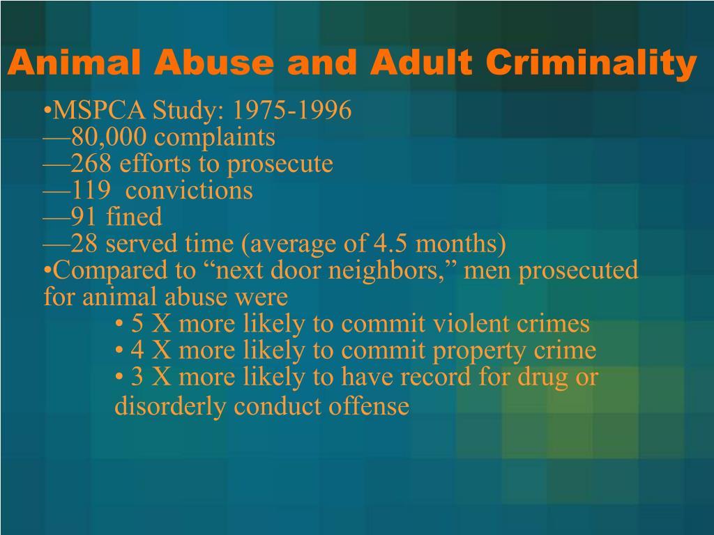 Animal Abuse and Adult Criminality