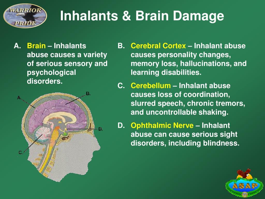 Inhalants & Brain Damage