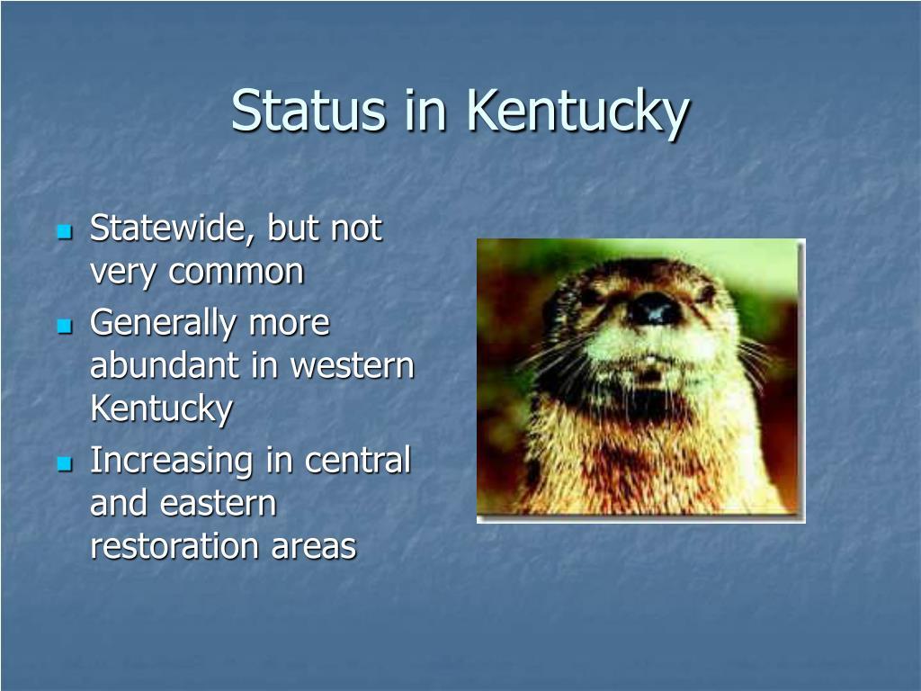 Status in Kentucky
