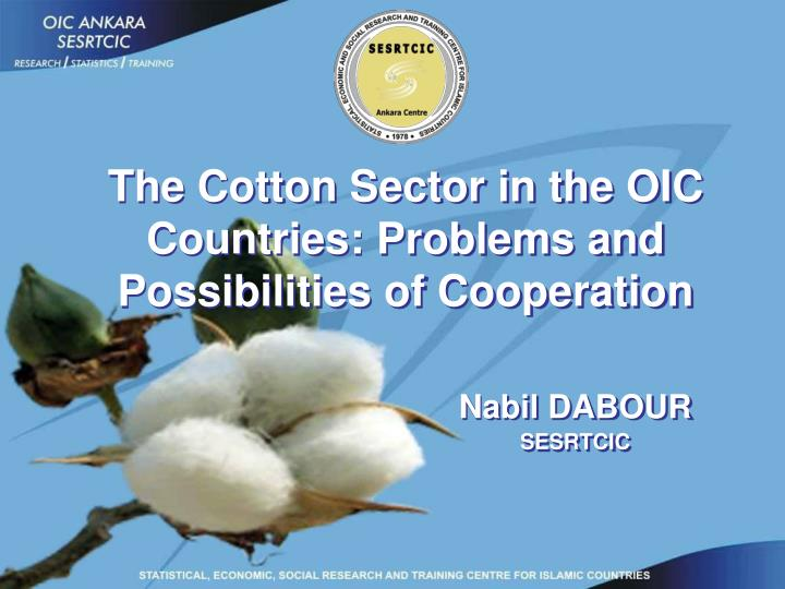 The Cotton Sector