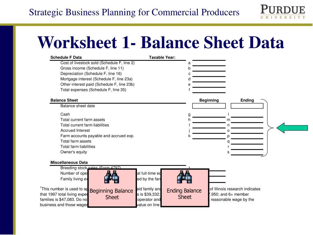 Worksheet 1- Balance Sheet Data