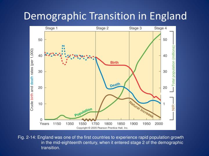 demography and demographic transition phase essay The demographic transition will lead to population stabilisation (wilson, 2002)   in summary, the dtm is descriptive of the transformation within countries and.