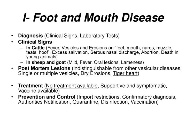 I foot and mouth disease1