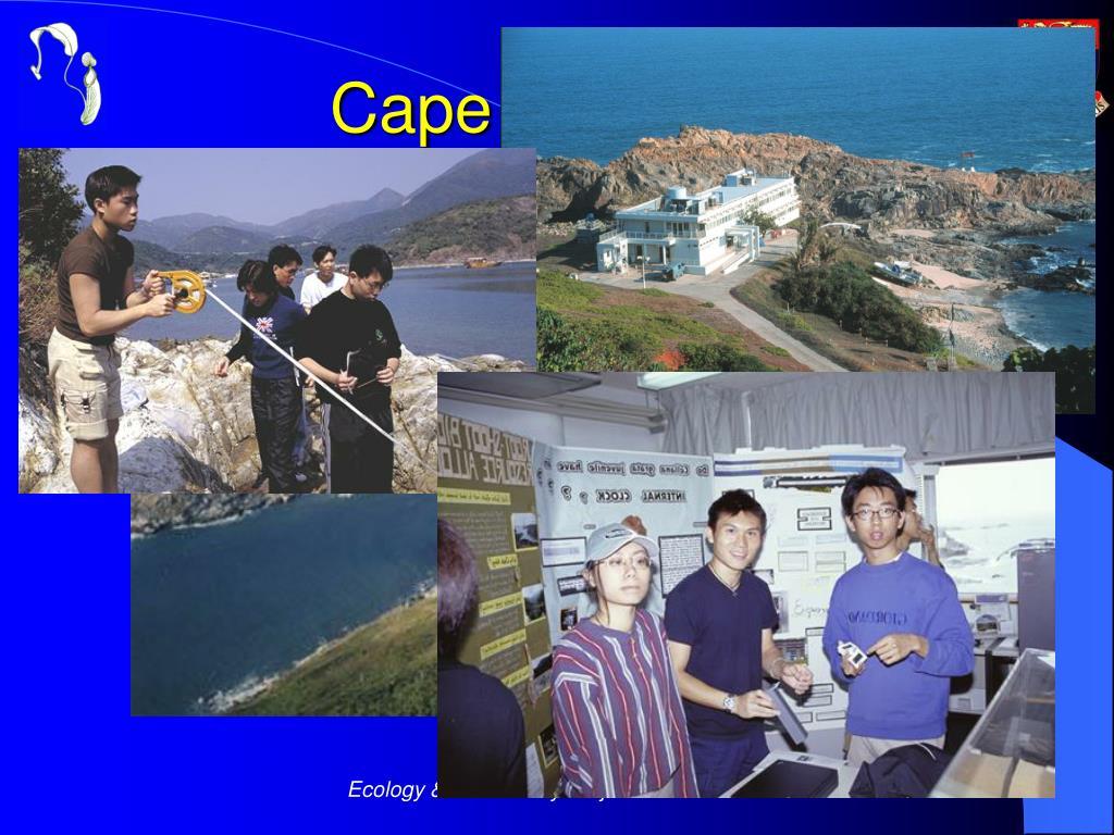 Cape d