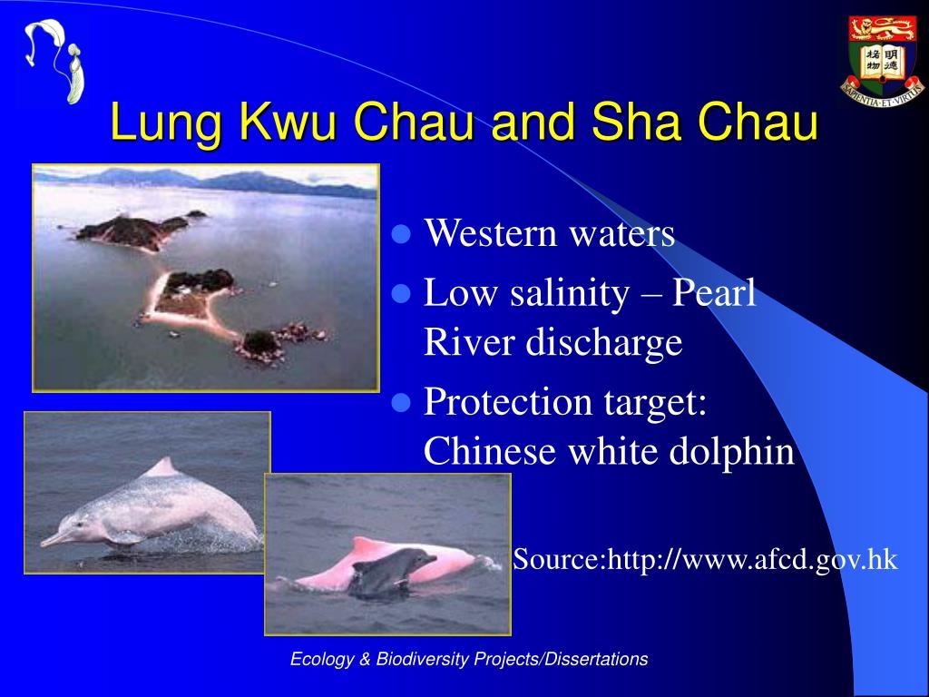 Lung Kwu Chau and Sha Chau