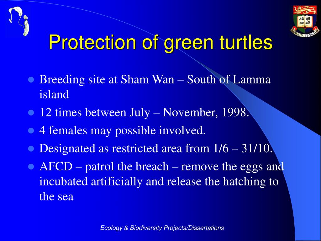 Protection of green turtles