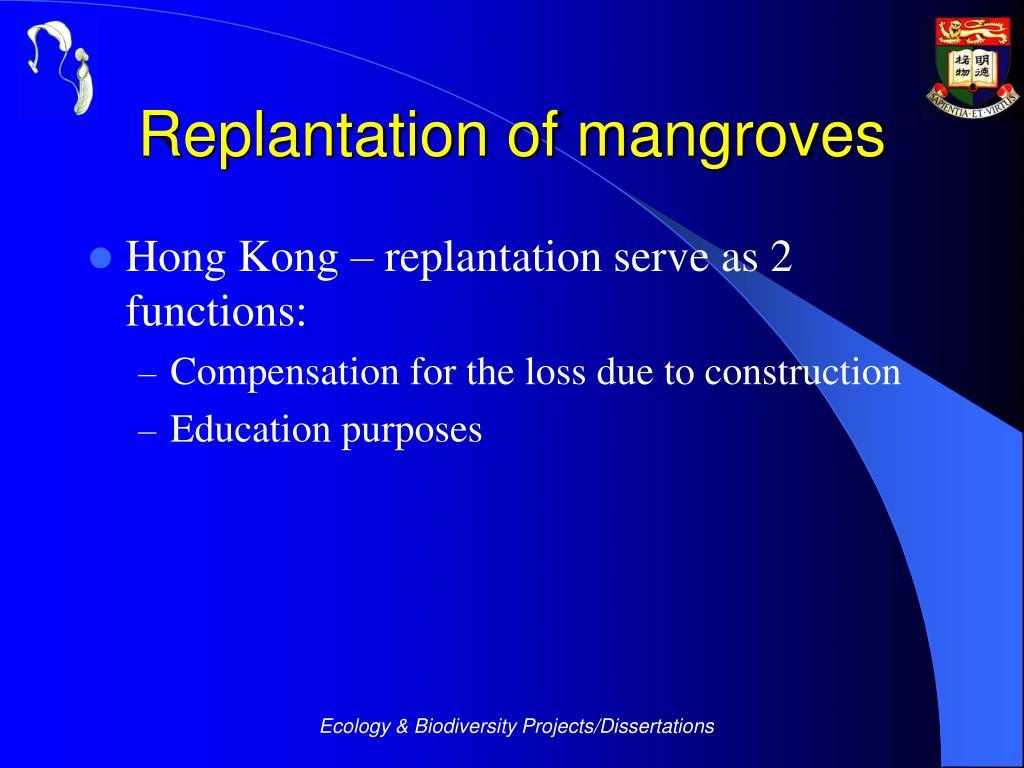 Replantation of mangroves